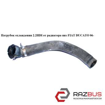 Патрубок охлаждения 2.2HDI от радиатора низ PEUGEOT BOXER III 2006-2014г