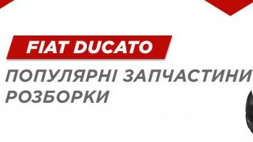 Запчастини Fiat Ducato
